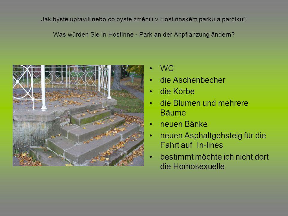 Jak byste upravili nebo co byste změnili v Hostinnském parku a parčíku? Was würden Sie in Hostinné - Park an der Anpflanzung ändern? WC die Aschenbech