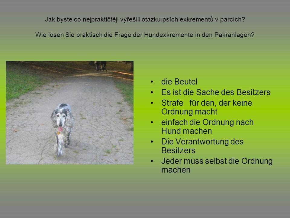 Jak byste co nejpraktičtěji vyřešili otázku psích exkrementů v parcích? Wie lösen Sie praktisch die Frage der Hundexkremente in den Pakranlagen? die B