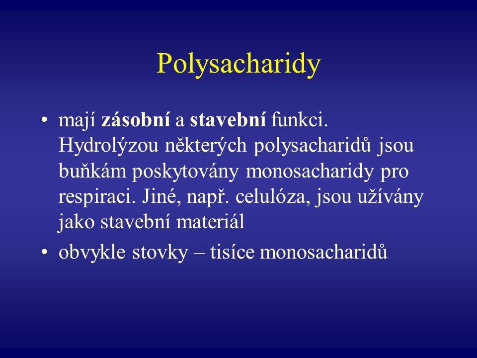 Polysacharidy mají zásobní a stavební funkci. Hydrolýzou některých polysacharidů jsou buňkám poskytovány monosacharidy pro respiraci. Jiné, např. celu