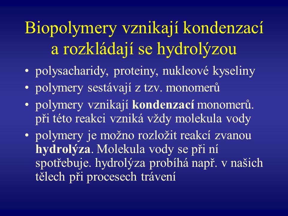 Kondenzace Hydrolýza Při kondenzaci poskytuje jeden monomer hydroxyl –OH a druhý vodík –H Tato reakce stojí buňku energii a probíhá pouze za asistence enzymů.