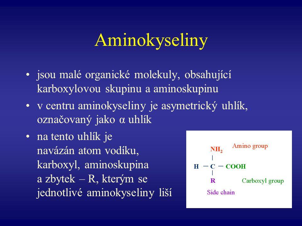 Aminokyseliny jsou malé organické molekuly, obsahující karboxylovou skupinu a aminoskupinu v centru aminokyseliny je asymetrický uhlík, označovaný jak