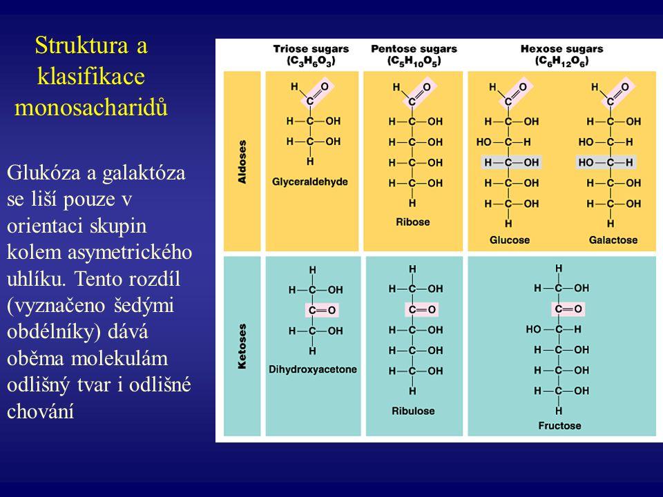 Struktura a klasifikace monosacharidů Glukóza a galaktóza se liší pouze v orientaci skupin kolem asymetrického uhlíku. Tento rozdíl (vyznačeno šedými