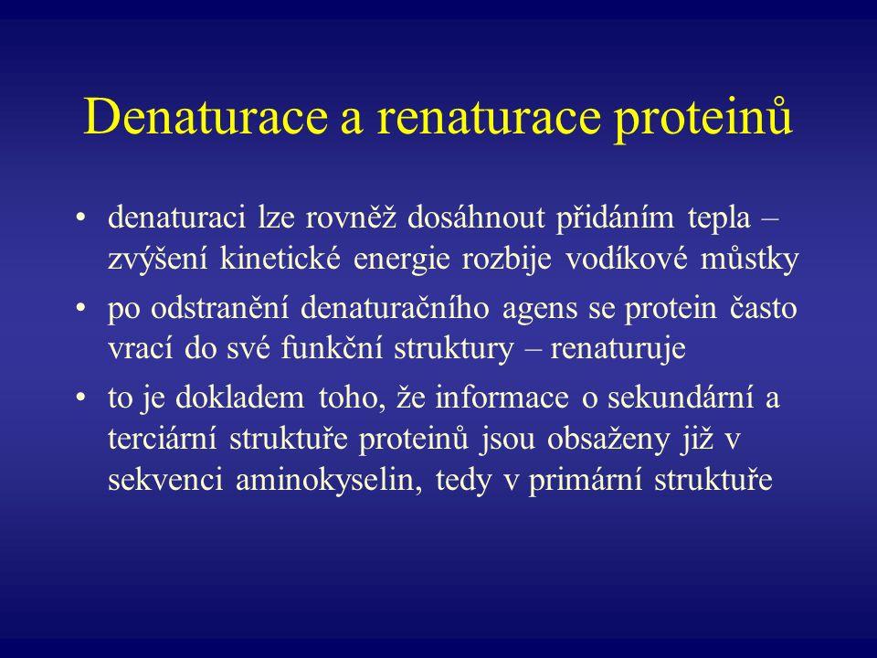 Denaturace a renaturace proteinů denaturaci lze rovněž dosáhnout přidáním tepla – zvýšení kinetické energie rozbije vodíkové můstky po odstranění dena