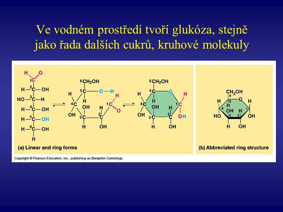 Ve vodném prostředí tvoří glukóza, stejně jako řada dalších cukrů, kruhové molekuly