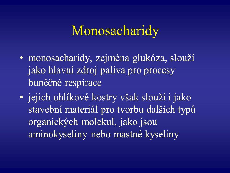 Monosacharidy monosacharidy, zejména glukóza, slouží jako hlavní zdroj paliva pro procesy buněčné respirace jejich uhlíkové kostry však slouží i jako