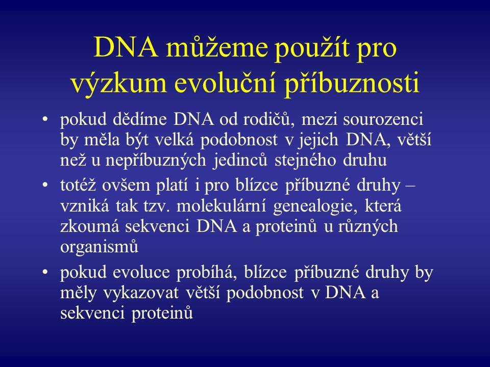 DNA můžeme použít pro výzkum evoluční příbuznosti pokud dědíme DNA od rodičů, mezi sourozenci by měla být velká podobnost v jejich DNA, větší než u ne