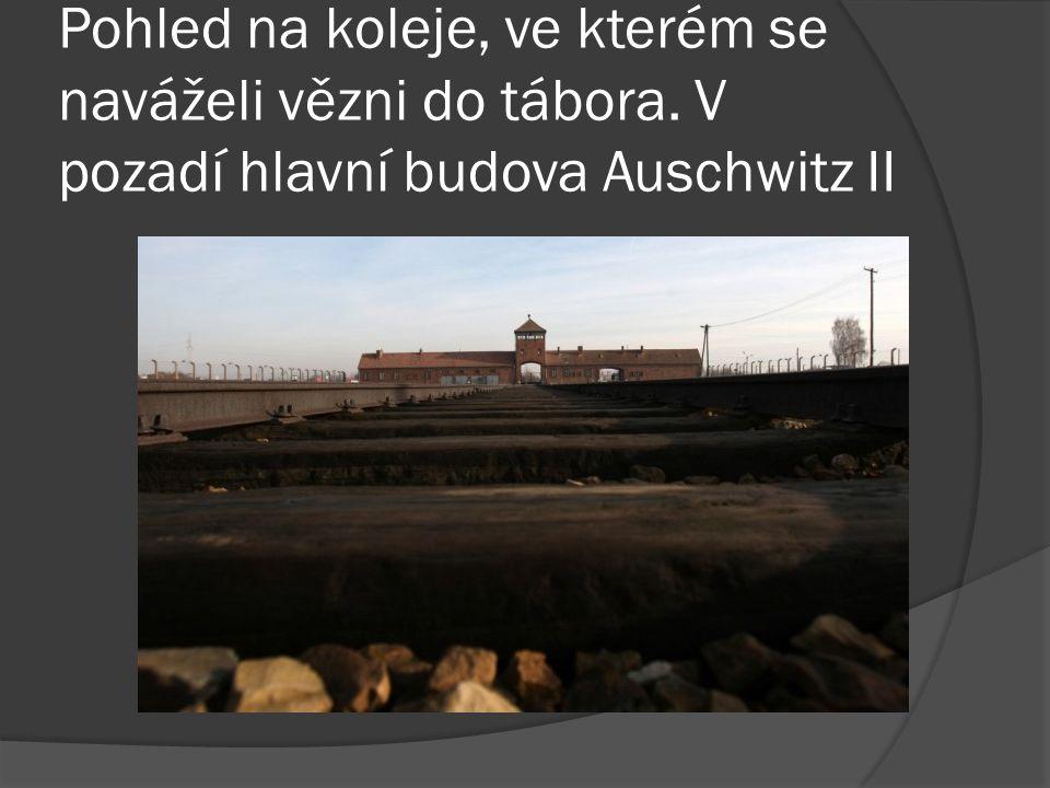 Pohled na koleje, ve kterém se naváželi vězni do tábora. V pozadí hlavní budova Auschwitz II