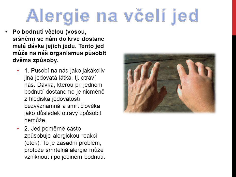 Po bodnutí včelou (vosou, sršněm) se nám do krve dostane malá dávka jejich jedu.