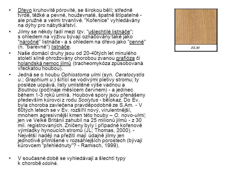 Dřevo kruhovitě pórovité, se širokou bělí; středně tvrdé, těžké a pevné, houževnaté, špatně štípatelné - ale pružné a velmi trvanlivé.
