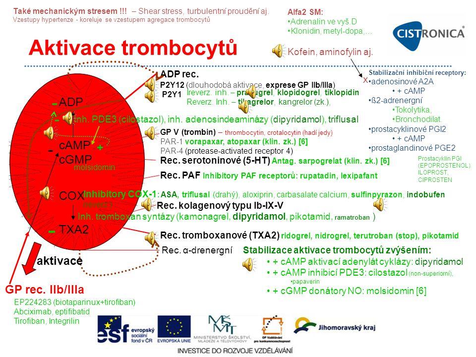 P2Y12 (dlouhodobá aktivace, exprese GP IIb/IIIa) P2Y1 Aktivace trombocytů ADP cAMP cGMP COX TXA2 ADP rec. Inh. PDE3 (cilostazol), inh. adenosindeaminá