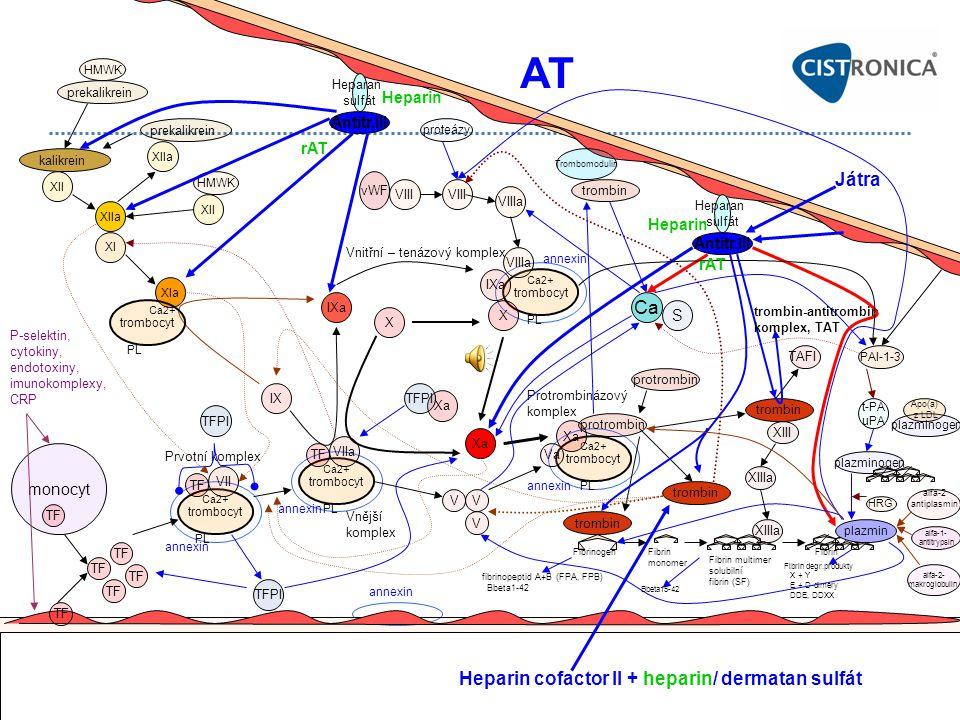 plazminogen Fibrin monomer Protrombinázový komplex monocyt TF P-selektin, cytokiny, endotoxiny, imunokomplexy, CRP TF trombocyt TF VII trombocyt TF VI