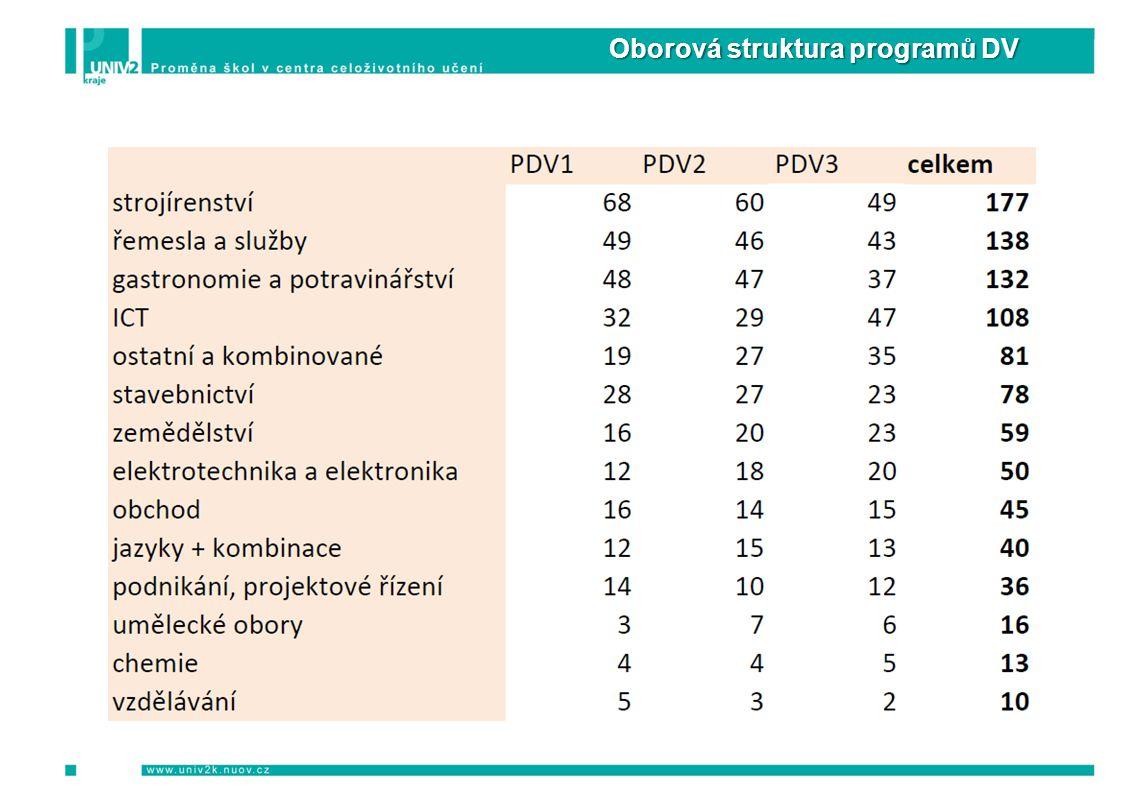 Oborová struktura programů DV