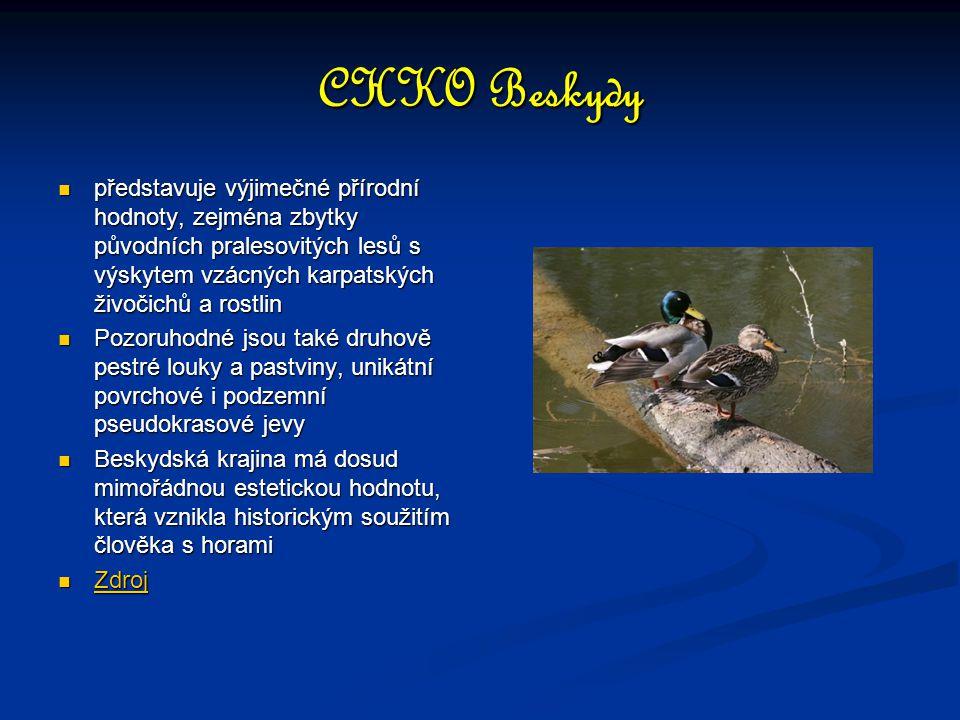 CHKO Beskydy představuje výjimečné přírodní hodnoty, zejména zbytky původních pralesovitých lesů s výskytem vzácných karpatských živočichů a rostlin p
