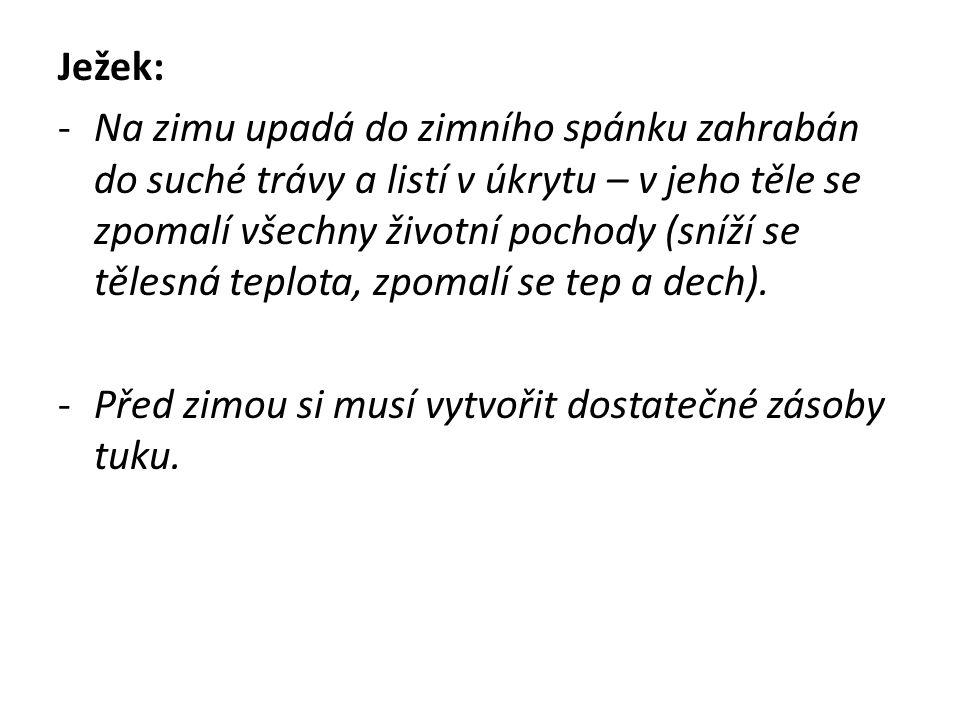 http://www.neviditelnycert.cz/data/files/img/smutny-jezek.JPG