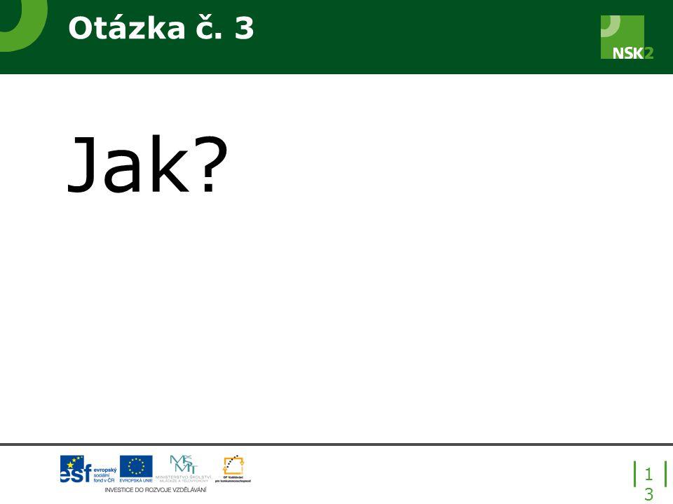 Otázka č. 3 Jak? 13