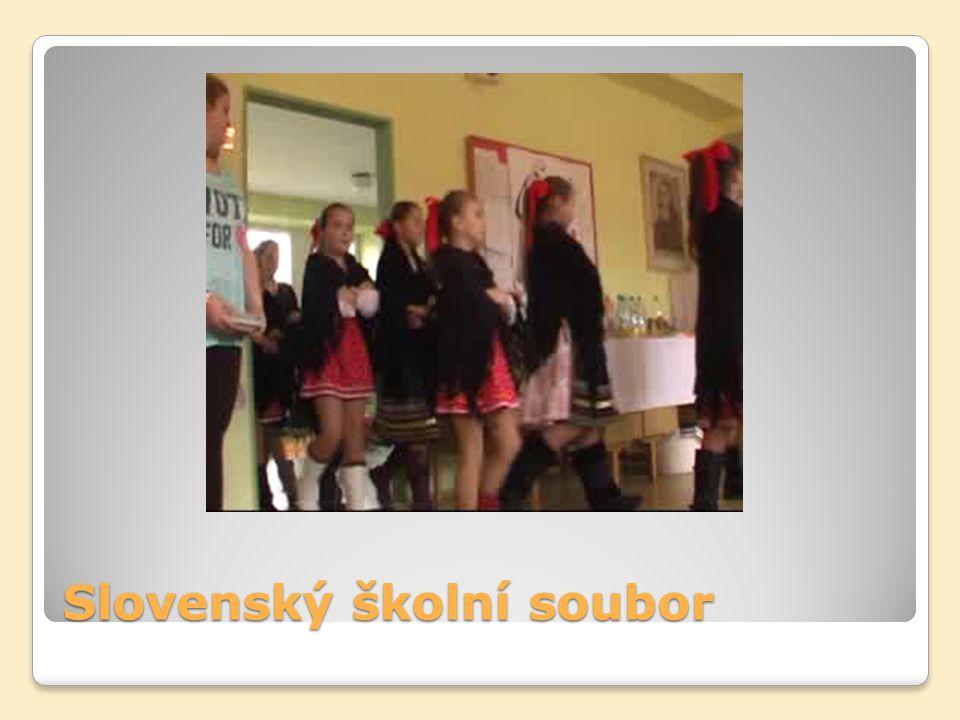 Slovenský školní soubor