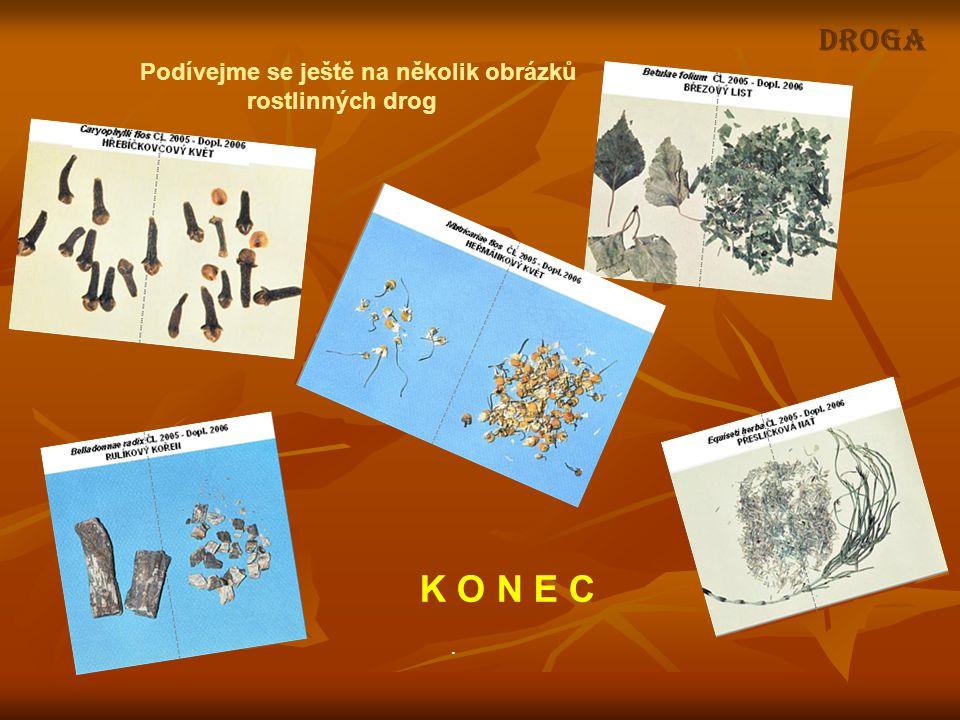 DROGA Podívejme se ještě na několik obrázků rostlinných drog K O N E C.