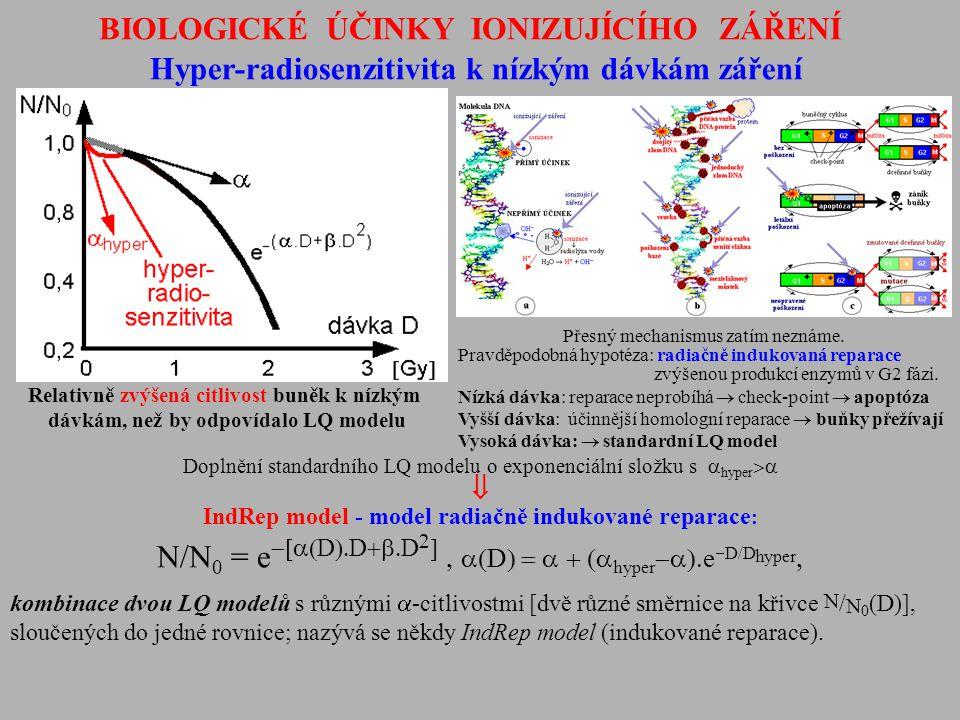 BIOLOGICKÉ ÚČINKY IONIZUJÍCÍHO ZÁŘENÍ Hyper-radiosenzitivita k nízkým dávkám záření Doplnění standardního LQ modelu o exponenciální složku s  hyper 