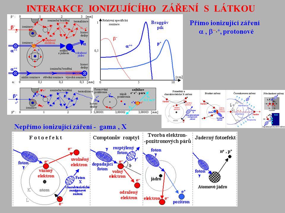 INTERAKCE IONIZUJÍCÍHO ZÁŘENÍ S LÁTKOU Přímo ionizující záření ,  , protonové Nepřímo ionizující záření - gama, X Braggův pík