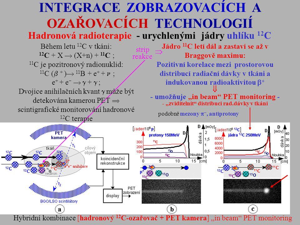 """INTEGRACE ZOBRAZOVACÍCH A OZAŘOVACÍCH TECHNOLOGIÍ Hybridní kombinace [hadronový 12 C-ozařovač + PET kamera] """"in beam"""" PET monitoring Hadronová radiote"""