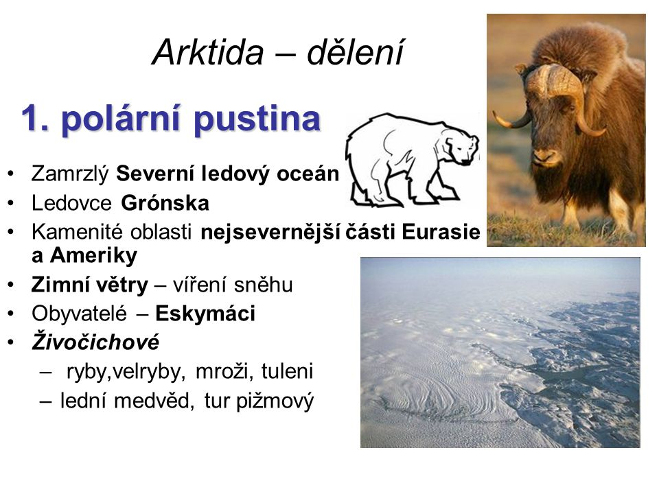 1. polární pustina Arktida – dělení 1. polární pustina Zamrzlý Severní ledový oceán Ledovce Grónska Kamenité oblasti nejsevernější části Eurasie a Ame