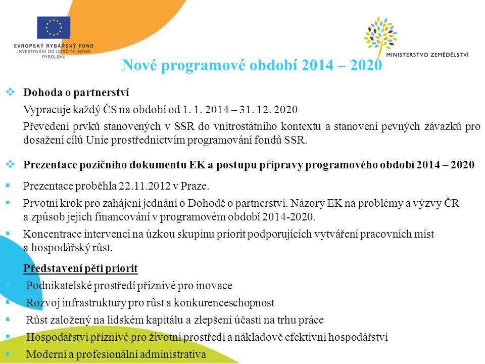 Nové programové období 2014 – 2020  Dohoda o partnerství Vypracuje každý ČS na období od 1. 1. 2014 – 31. 12. 2020 Převedení prvků stanovených v SSR