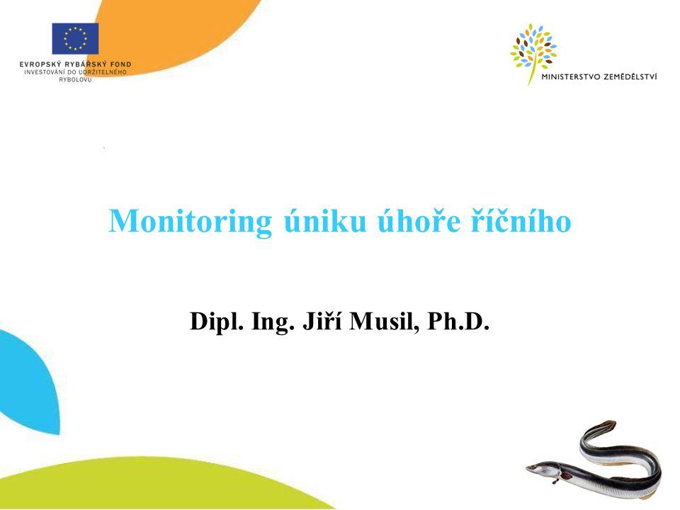 Monitoring úniku úhoře říčního Dipl. Ing. Jiří Musil, Ph.D.