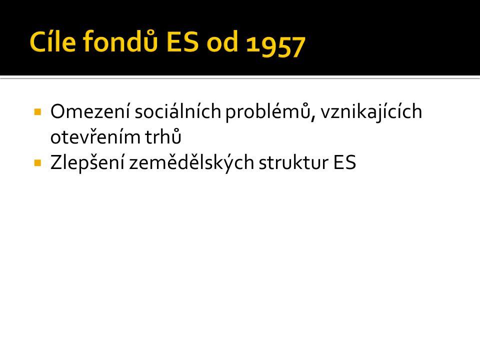  Omezení sociálních problémů, vznikajících otevřením trhů  Zlepšení zemědělských struktur ES