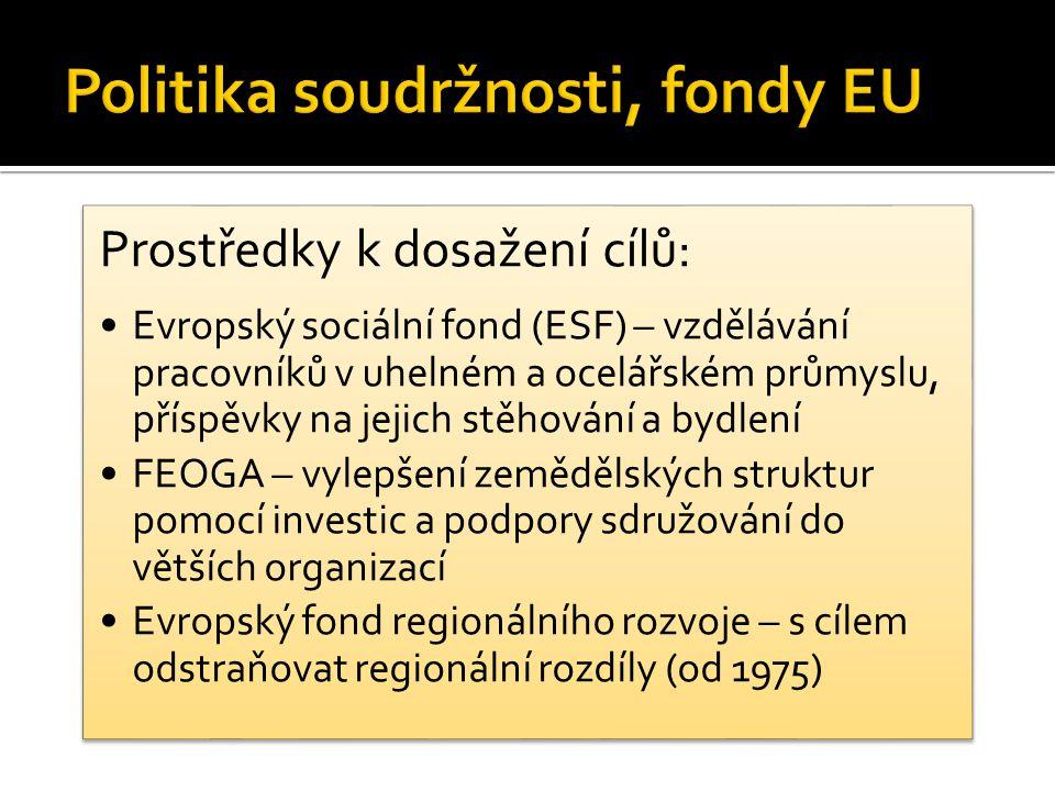 Prostředky k dosažení cílů: Evropský sociální fond (ESF) – vzdělávání pracovníků v uhelném a ocelářském průmyslu, příspěvky na jejich stěhování a bydlení FEOGA – vylepšení zemědělských struktur pomocí investic a podpory sdružování do větších organizací Evropský fond regionálního rozvoje – s cílem odstraňovat regionální rozdíly (od 1975)