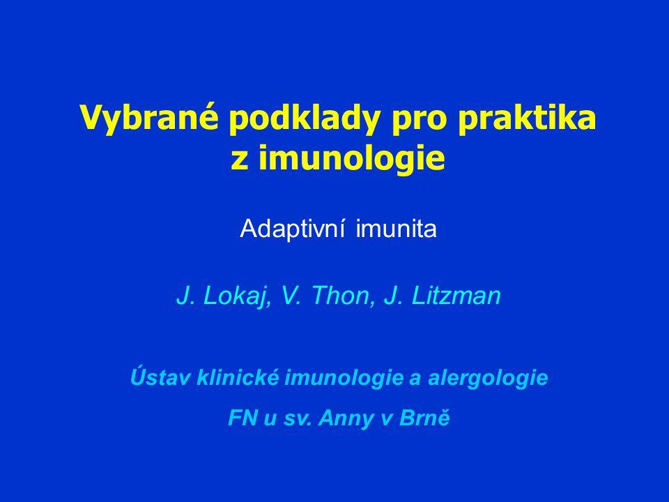 Lymfocyty T a B jsou základními operačními jednotkami adaptivní imunity
