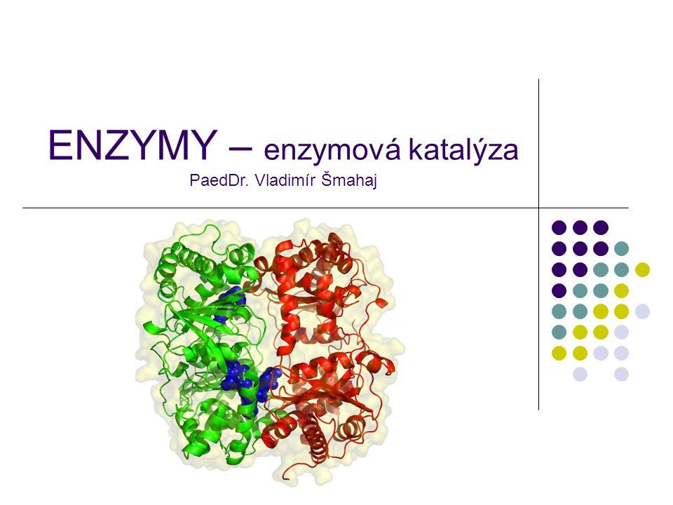 ENZYMY – enzymová katalýza PaedDr. Vladimír Šmahaj