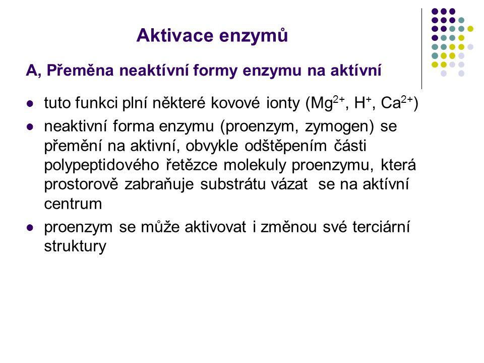 Aktivace enzymů A, Přeměna neaktívní formy enzymu na aktívní tuto funkci plní některé kovové ionty (Mg 2+, H +, Ca 2+ ) neaktivní forma enzymu (proenz