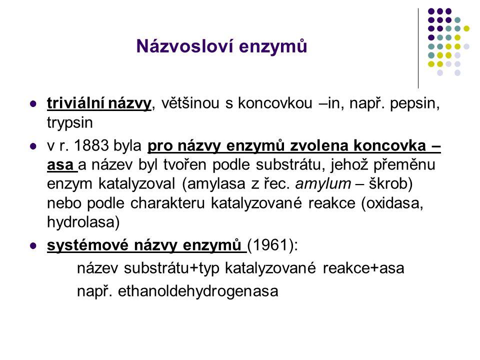 Názvosloví enzymů triviální názvy, většinou s koncovkou –in, např. pepsin, trypsin v r. 1883 byla pro názvy enzymů zvolena koncovka – asa a název byl