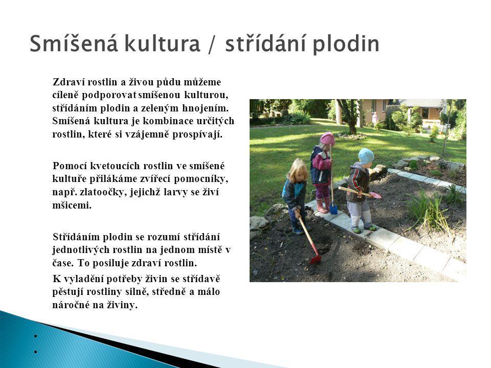 Zdraví rostlin a živou půdu můžeme cíleně podporovat smíšenou kulturou, střídáním plodin a zeleným hnojením. Smíšená kultura je kombinace určitých ros