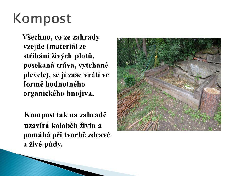 Kompost Všechno, co ze zahrady vzejde (materiál ze stříhání živých plotů, posekaná tráva, vytrhané plevele), se jí zase vrátí ve formě hodnotného orga