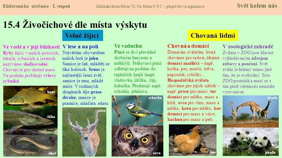 15.3 Společné znaky živočichů Elektronická učebnice - I.