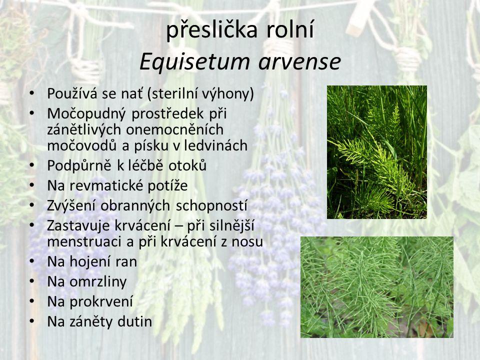 ZDROJE www.biolib.cz C HEVALLIER A.(2008): Rostliny léčí.