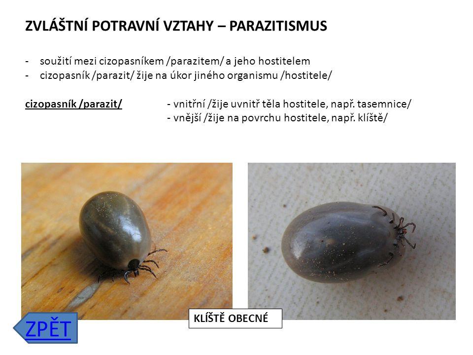 ZVLÁŠTNÍ POTRAVNÍ VZTAHY – SYMBIÓZA -výhodné soužití dvou organismů -oba organismy mají ze soužití prospěch Příklady: soužití mravenců a mšic soužití ryby klauna a mořské sasanky rostlina a její opylovač ZPĚT