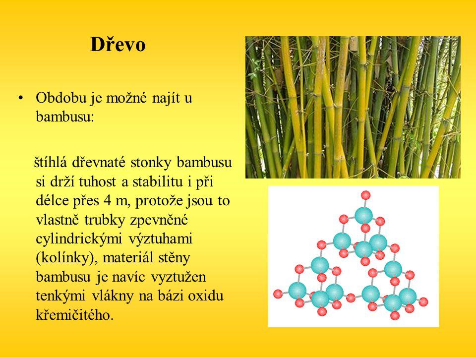 Dřevo Obdobu je možné najít u bambusu: štíhlá dřevnaté stonky bambusu si drží tuhost a stabilitu i při délce přes 4 m, protože jsou to vlastně trubky