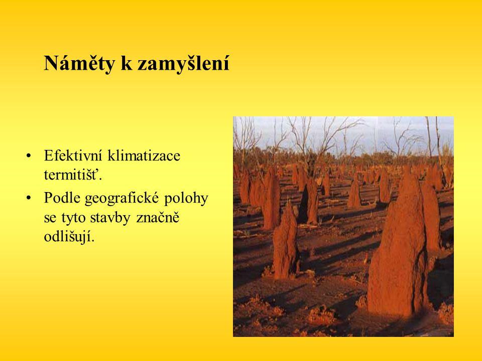 Náměty k zamyšlení Efektivní klimatizace termitišť. Podle geografické polohy se tyto stavby značně odlišují.