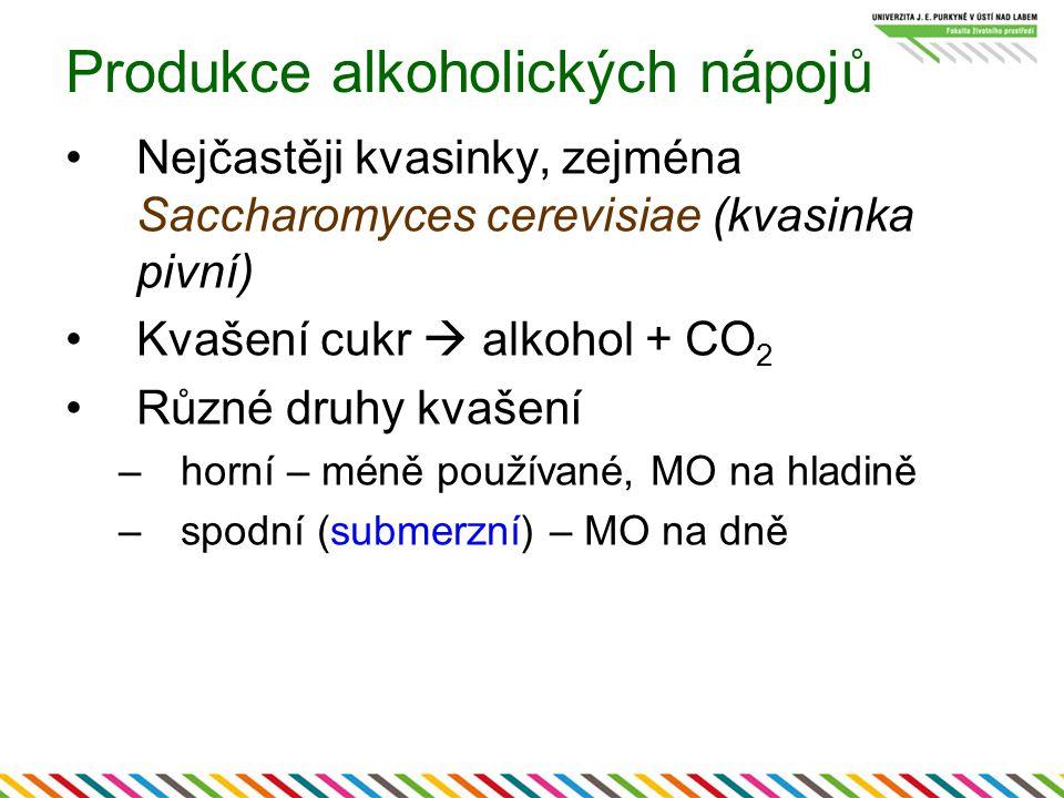 Produkce alkoholických nápojů Nejčastěji kvasinky, zejména Saccharomyces cerevisiae (kvasinka pivní) Kvašení cukr  alkohol + CO 2 Různé druhy kvašení –horní – méně používané, MO na hladině –spodní (submerzní) – MO na dně