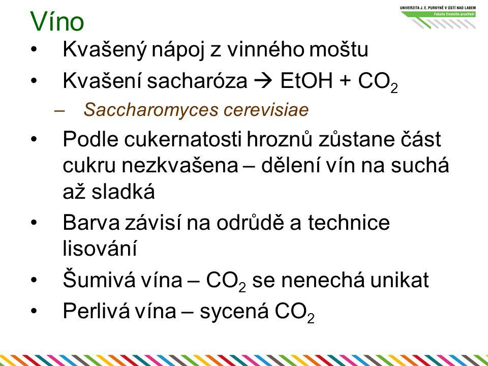 Víno Kvašený nápoj z vinného moštu Kvašení sacharóza  EtOH + CO 2 –Saccharomyces cerevisiae Podle cukernatosti hroznů zůstane část cukru nezkvašena – dělení vín na suchá až sladká Barva závisí na odrůdě a technice lisování Šumivá vína – CO 2 se nenechá unikat Perlivá vína – sycená CO 2