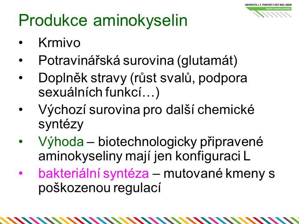 Produkce aminokyselin Krmivo Potravinářská surovina (glutamát) Doplněk stravy (růst svalů, podpora sexuálních funkcí…) Výchozí surovina pro další chemické syntézy Výhoda – biotechnologicky připravené aminokyseliny mají jen konfiguraci L bakteriální syntéza – mutované kmeny s poškozenou regulací