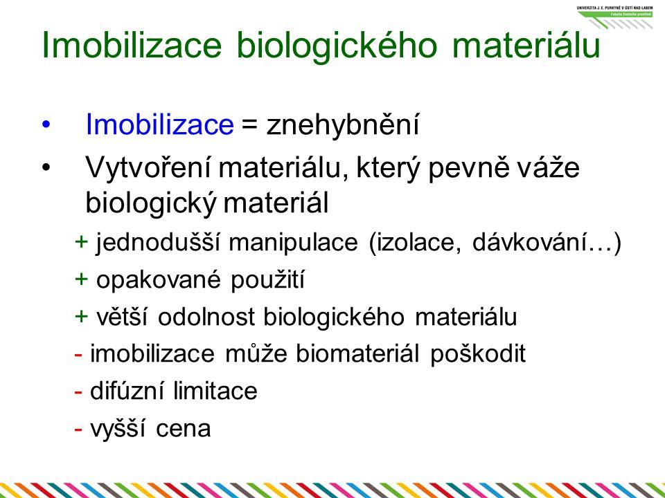 Imobilizace biologického materiálu Imobilizace = znehybnění Vytvoření materiálu, který pevně váže biologický materiál + jednodušší manipulace (izolace, dávkování…) + opakované použití + větší odolnost biologického materiálu - imobilizace může biomateriál poškodit - difúzní limitace - vyšší cena