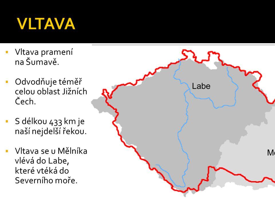  Vltava pramení na Šumavě.  Odvodňuje téměř celou oblast Jižních Čech.