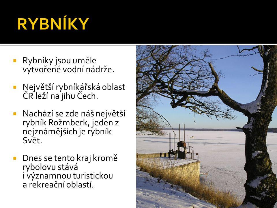  Rybníky jsou uměle vytvořené vodní nádrže.  Největší rybníkářská oblast ČR leží na jihu Čech.