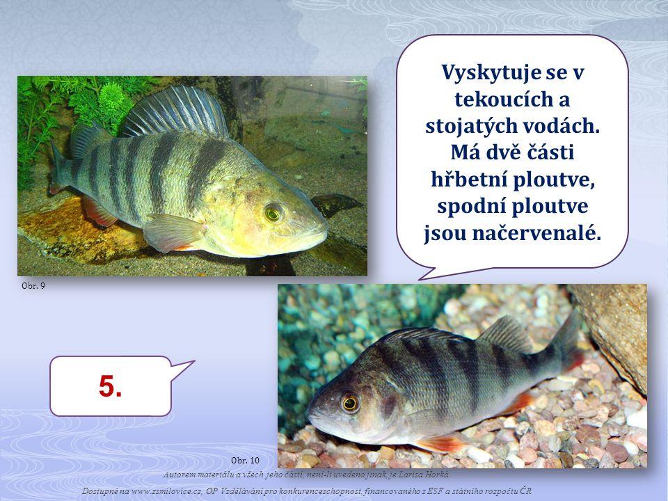 5.Vyskytuje se v tekoucích a stojatých vodách.
