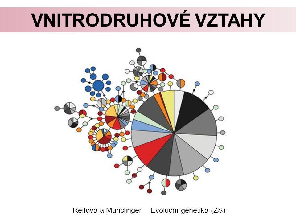 VNITRODRUHOVÉ VZTAHY Reifová a Munclinger – Evoluční genetika (ZS)