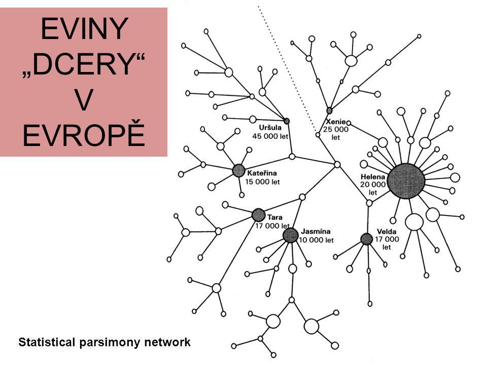 V EVROPĚ Statistical parsimony network