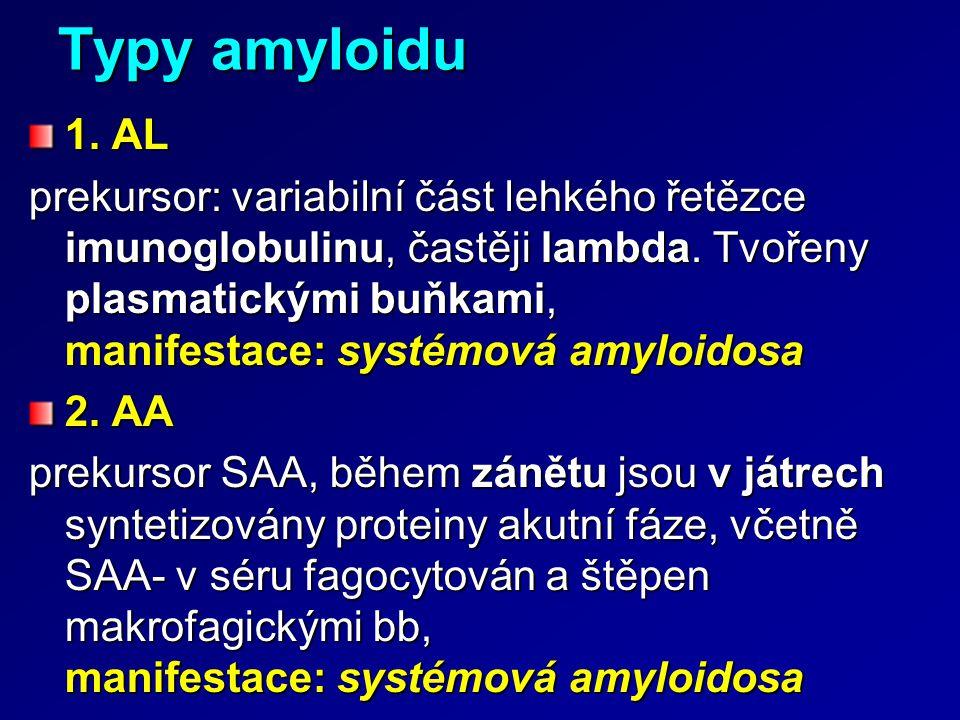 Typy amyloidu 1. AL prekursor: variabilní část lehkého řetězce imunoglobulinu, častěji lambda. Tvořeny plasmatickými buňkami, manifestace: systémová a